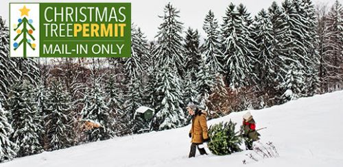 Christmas Tree Permit by Mail Only.  Orders Must be Received Before December 4, 2020