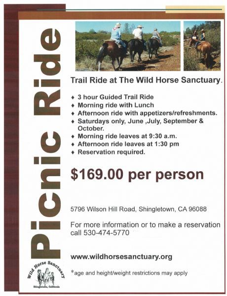 2019 Picnic Trail Rides at the Wild Horse Sanctuary in Shingletown