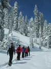 Ranger-Led Snowshoe Walks at Lassen Park Saturdays and Sundays until April 2, 2017