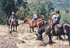 Trail Rides at the Wild Horse Sanctuary